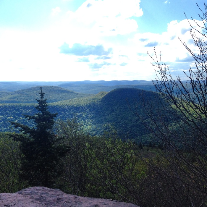 One of the beautiful viewpoints on Peekamoose Mountain that made the steep ascent worthwhile. Photo by Amy Sowder.